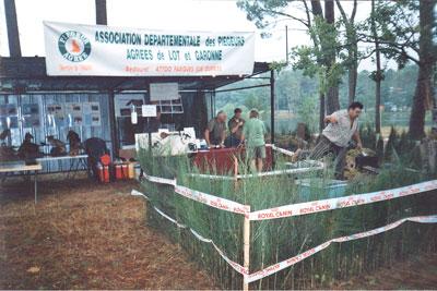Fête du chien et de la chasse à Casteljaloux